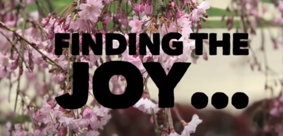Finding The Joy